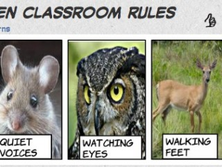 Introducing the Classroom Rules